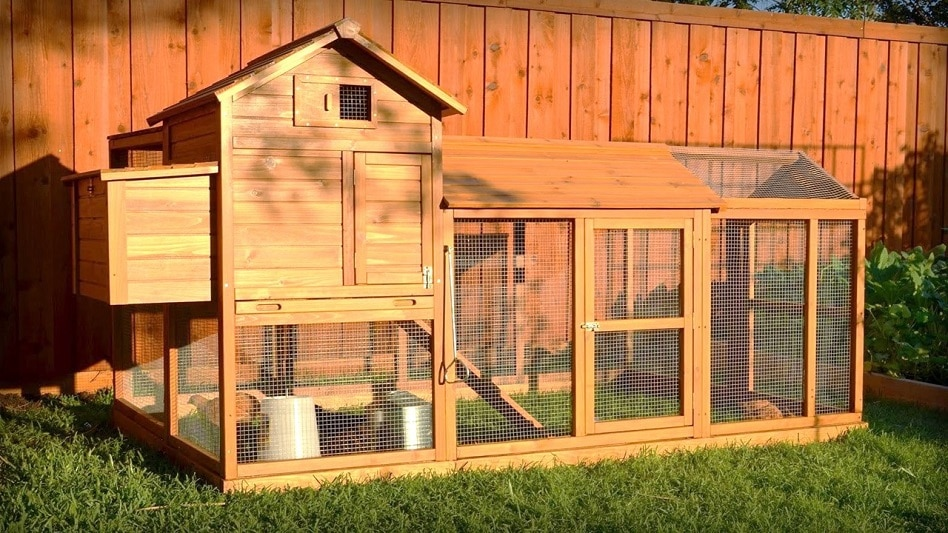 Backyard Chicken Coup the best backyard chicken coops for small flocks in 2018 | craft +